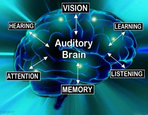 It is Said That 80% of What We Do in a Given Day is Auditory Based...