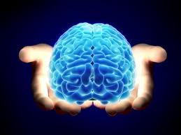 Neurofeedback: A Powerful Tool for Cognitive and Developmental Testing and Rehabilitation